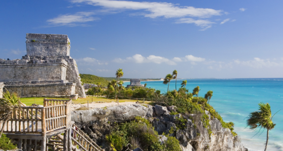 contoyexcursions tulum private tour