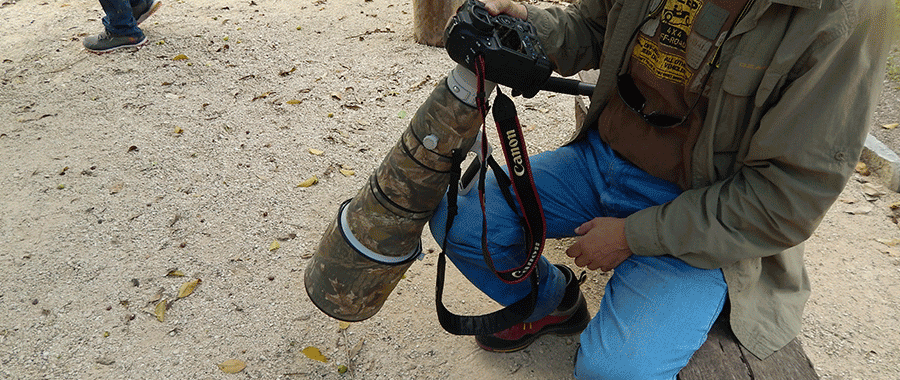 professional birdwatching local guides tour cancun contoyexcursions