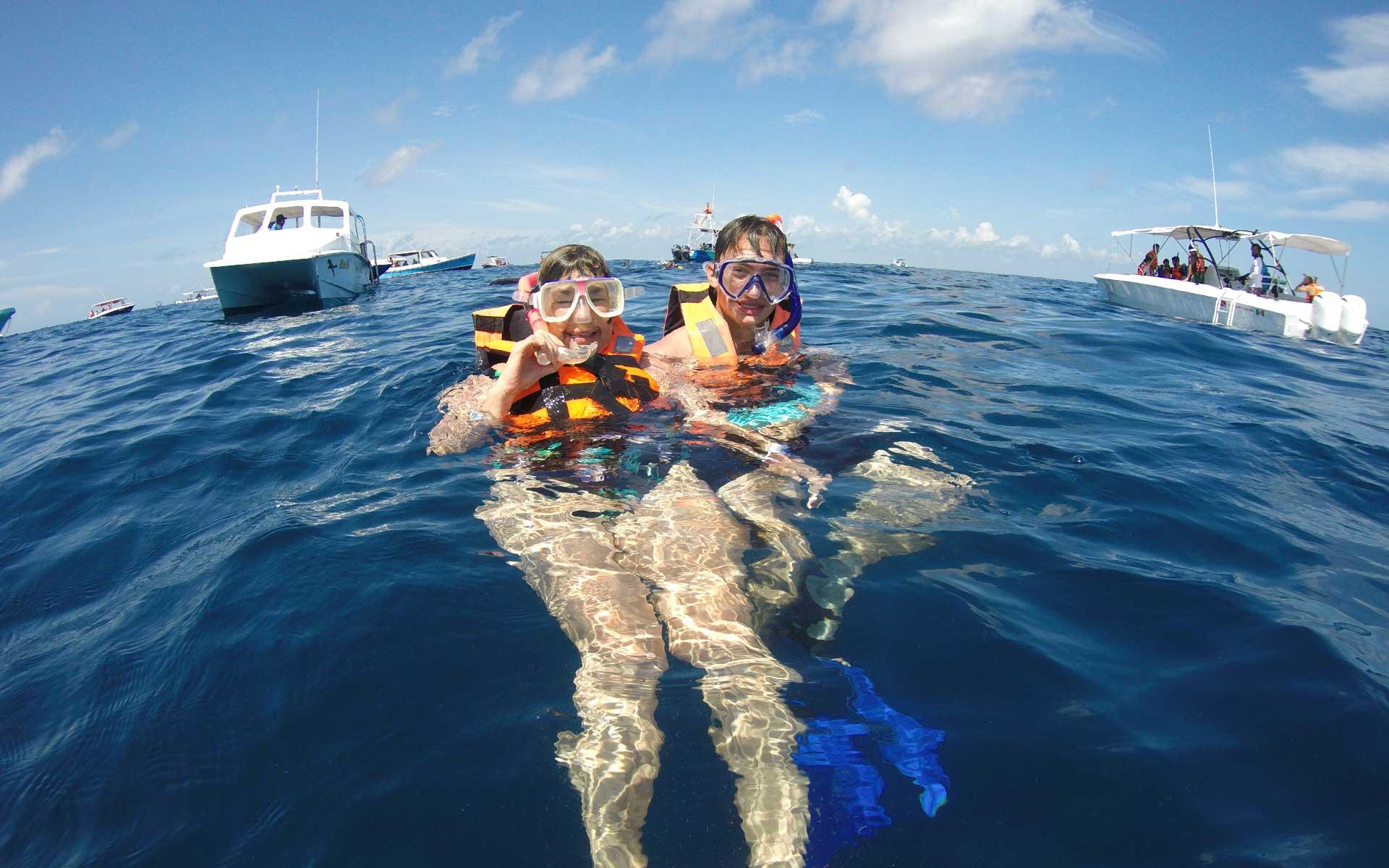 whaleshark-tour-cancun-riviera-maya