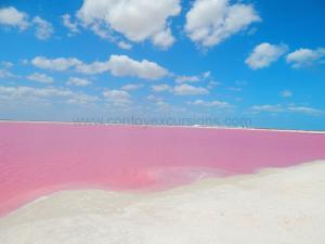 pink-lagoon-las-coloradas